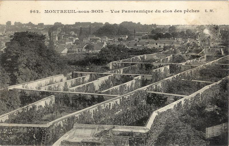 Murs Montreuil
